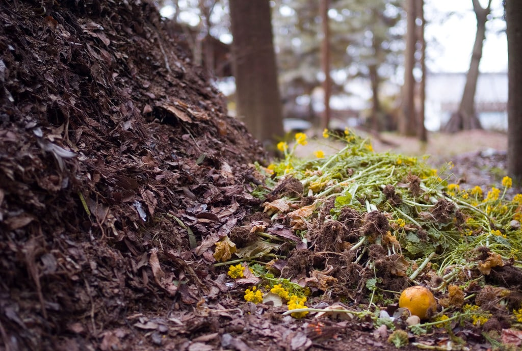 Build own compost piles