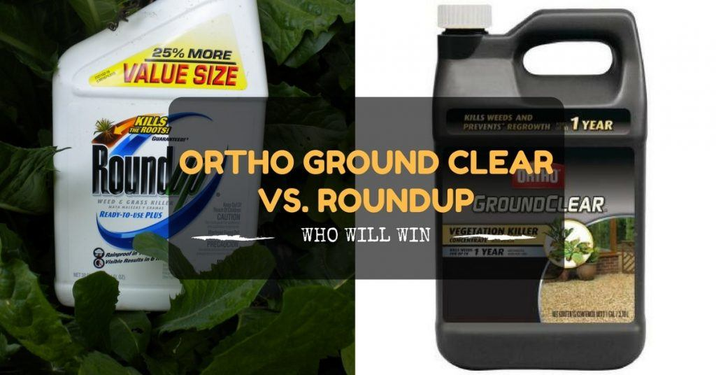 Ortho Ground Clear Vs Roundup