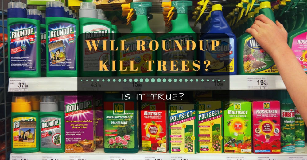 Will Roundup kill trees