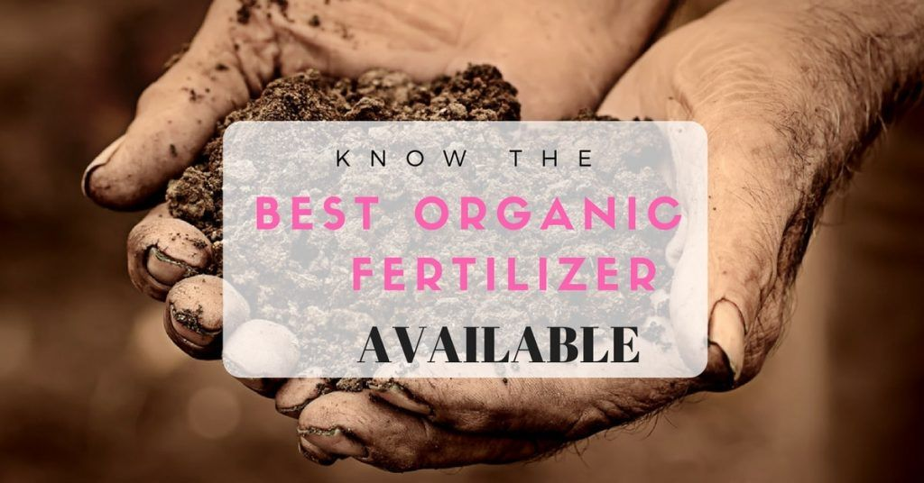Best Organic Fertilizer Reviews - Buyer's Guide