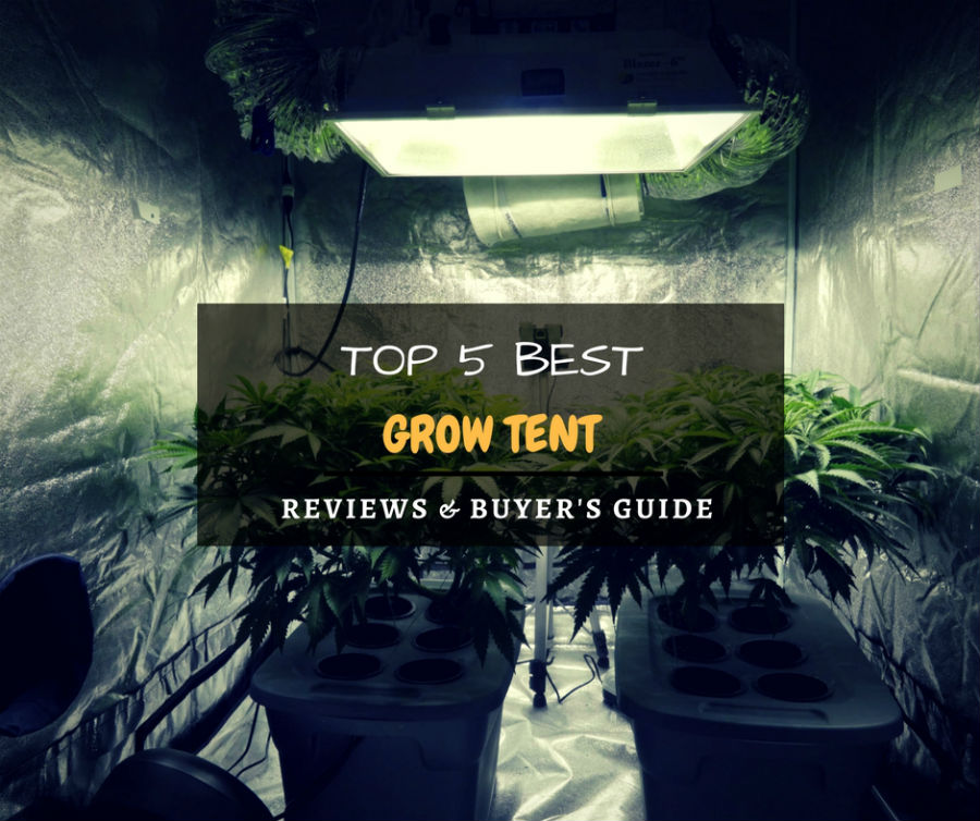 5 Best Grow Tents 2016 2017 Reviews Amp Guide Top Rated
