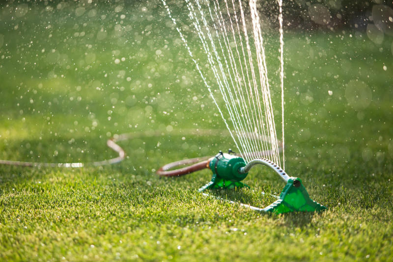 Watering Your Lawn After Fertilization
