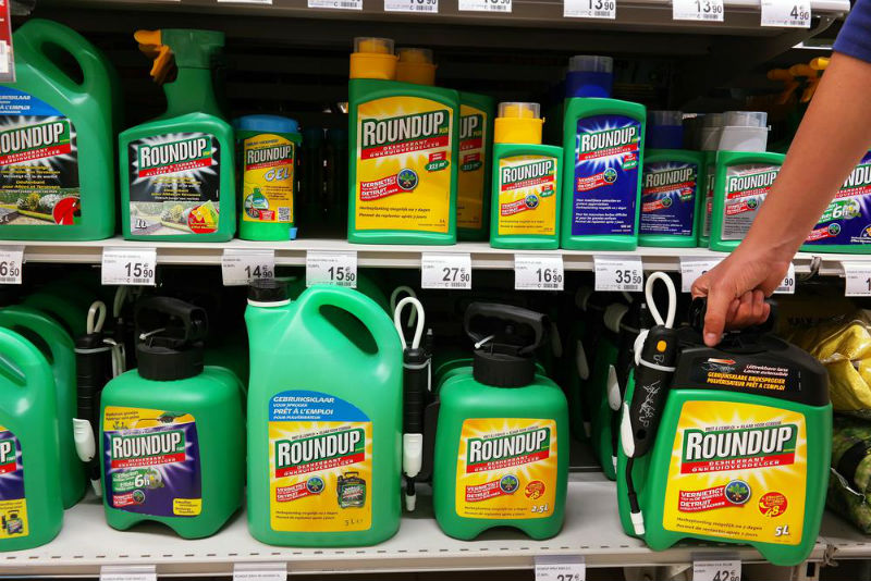Using Glyphosate Herbicide