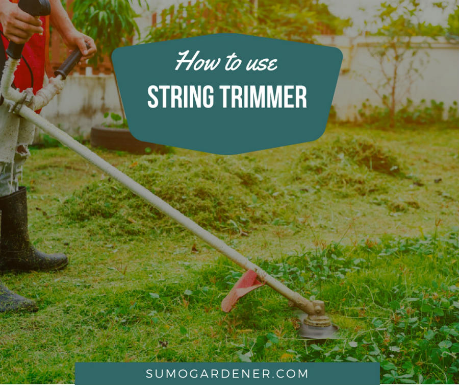 How to use a string trimmer properly