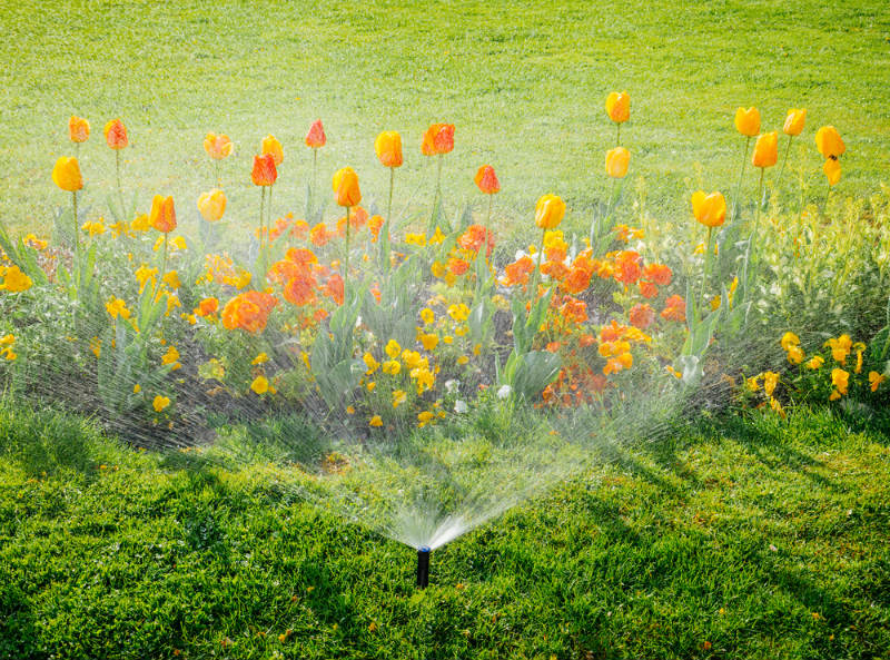 Watering Landscapes Areas and Flower Beds
