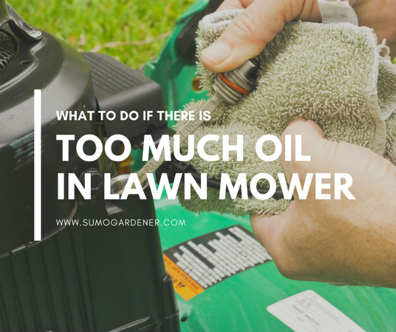 What to do if there is too much oil in lawn mower
