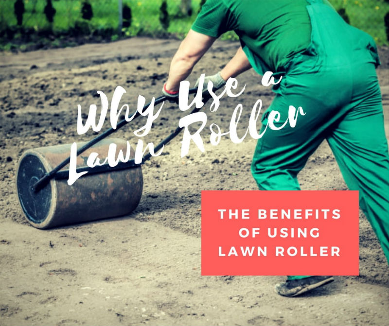 Why use a lawn roller