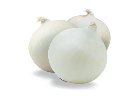 snow white onion