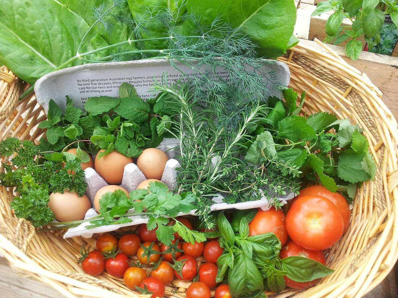 Knowing the proper spacing between your tomato plants can be a difference between having a lush harvest and not