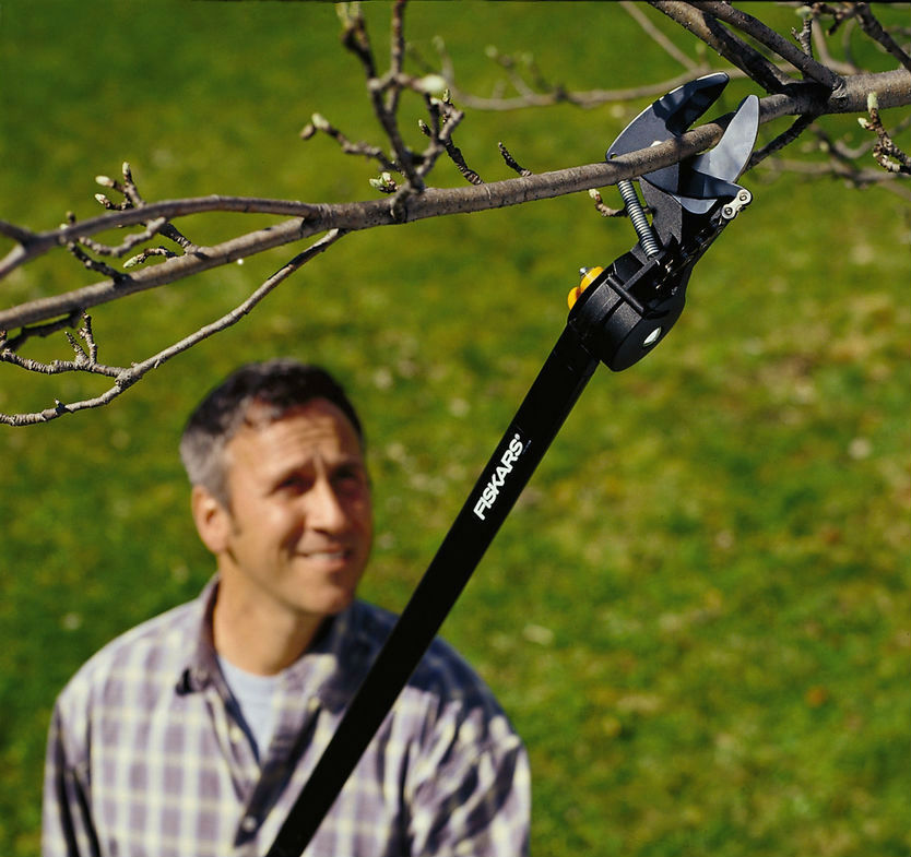 how long do you need your tree pruner