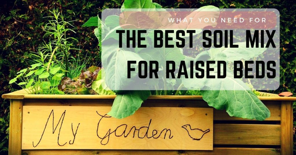 What You Need for the Best Soil Mix for Raised Beds