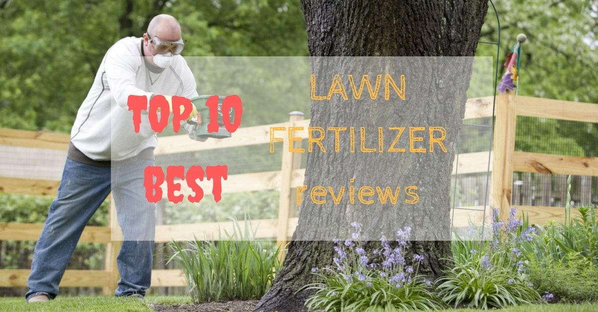Best Lawn Fertilizer Reviews