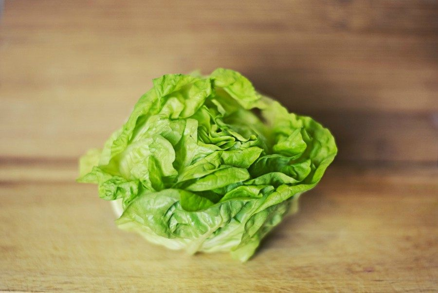 Lettuce does not require you to provide it with a lot of space