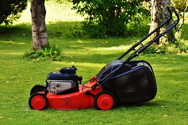 Lawn mower - How To cut the grass properly