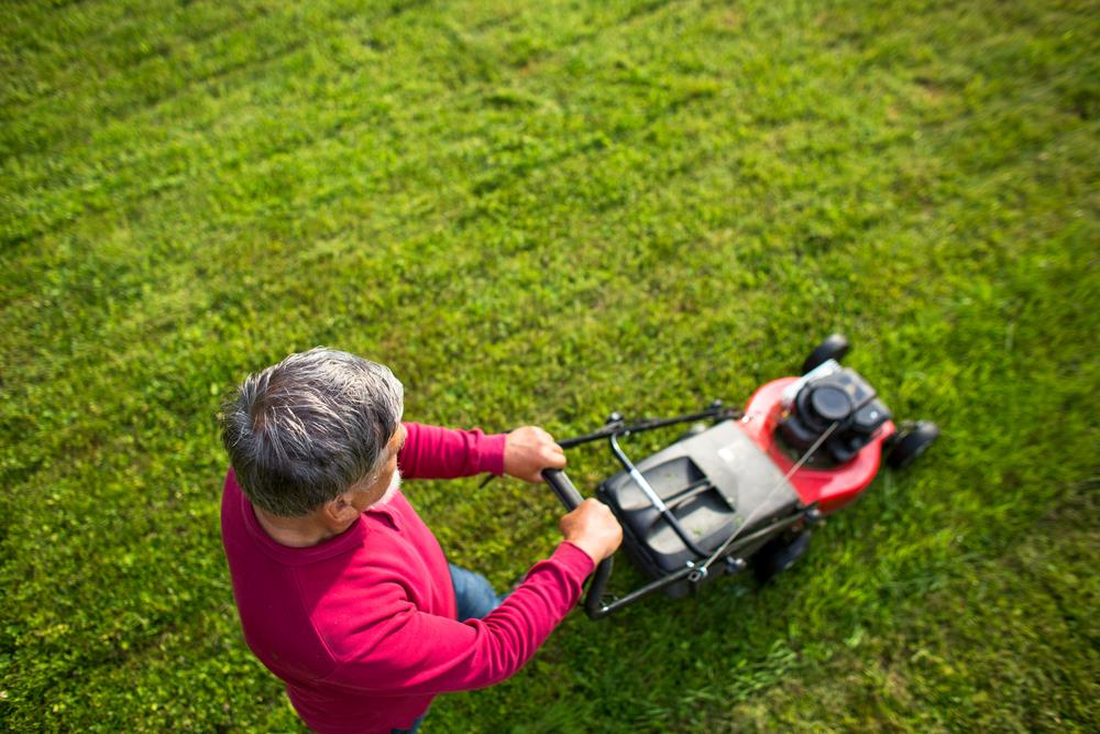 Mow your grass high - How to get rid of clover