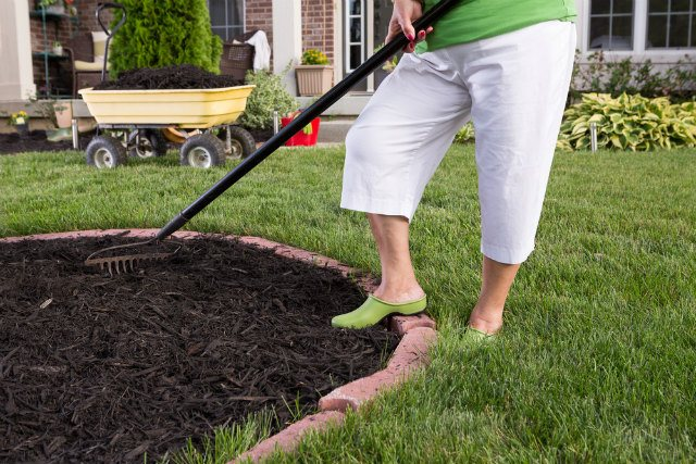 Benefits of Using Pine Needles as Mulch​