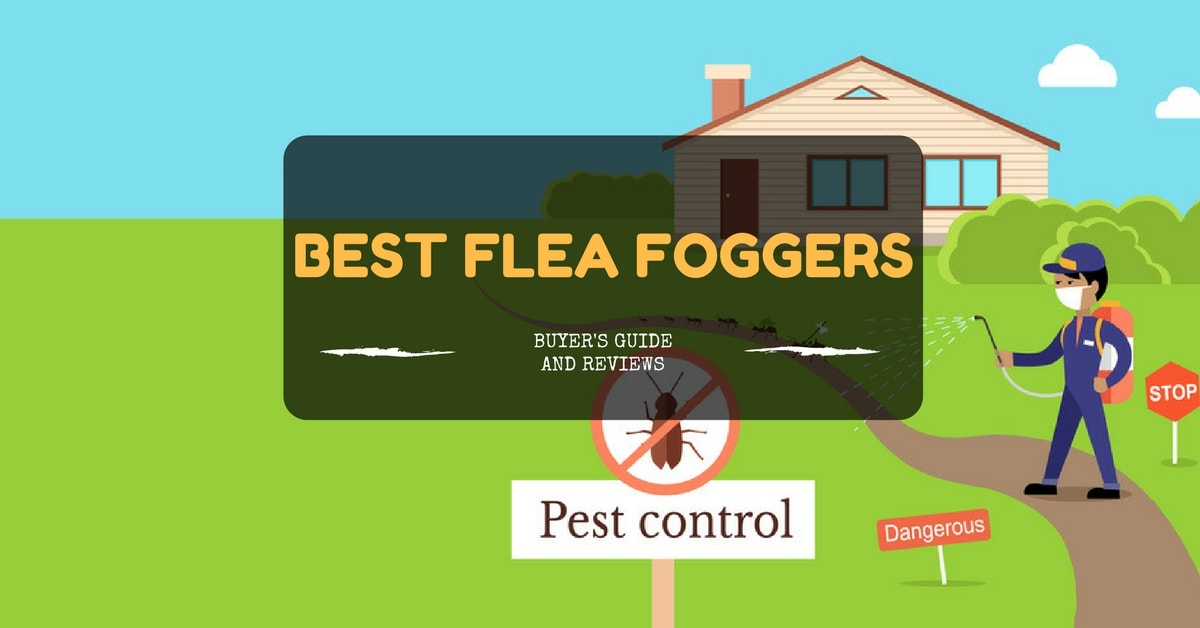 Best Flea Foggers - Buyer's Guide and Reviews