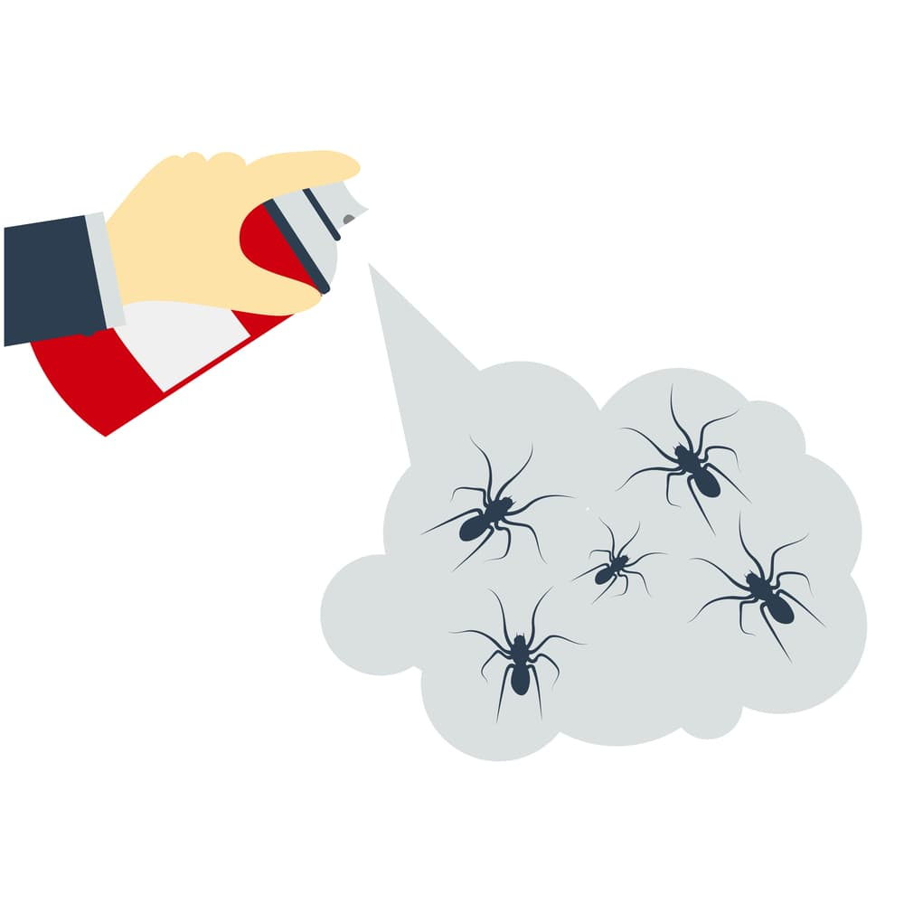 Chemicals made spider repellent