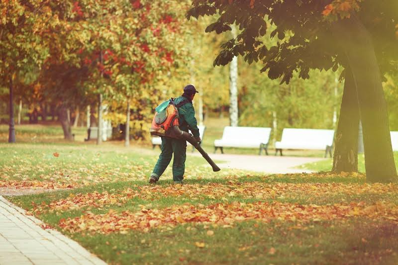 Facts about leaf blowers