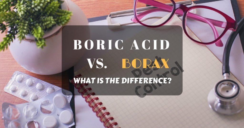 Boric acid vs. borax