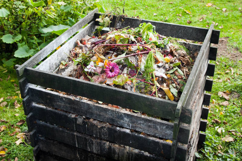 Here are a few tips that you need to remember when it comes to maintaining your compost bin or tumbler:
