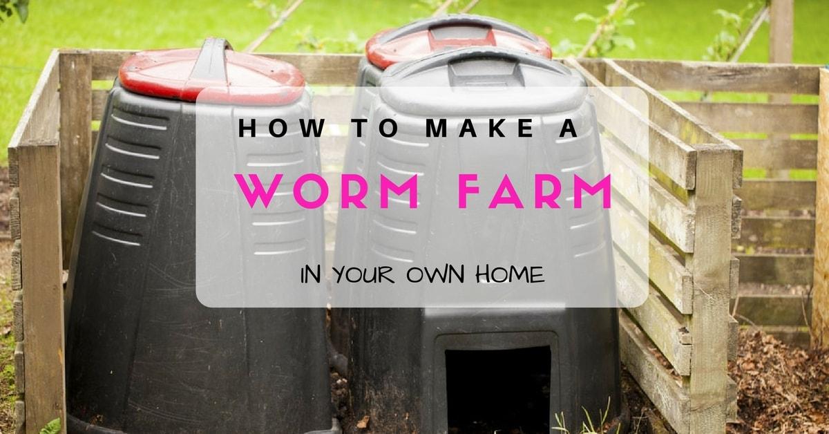 How to make a worm farm