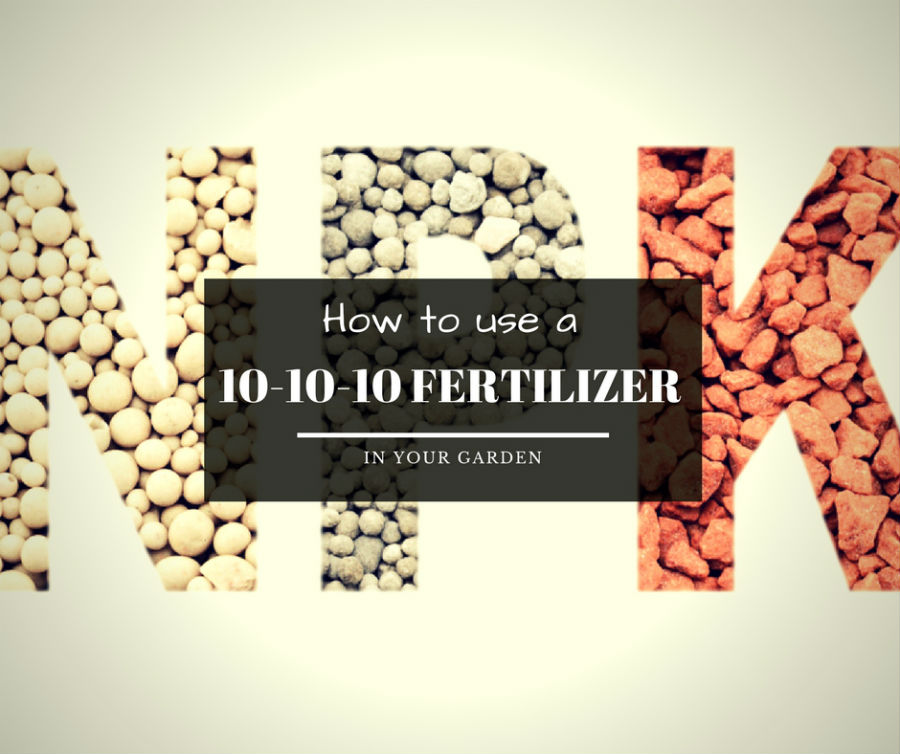How to use a 10-10-10 fertilizer in your garden