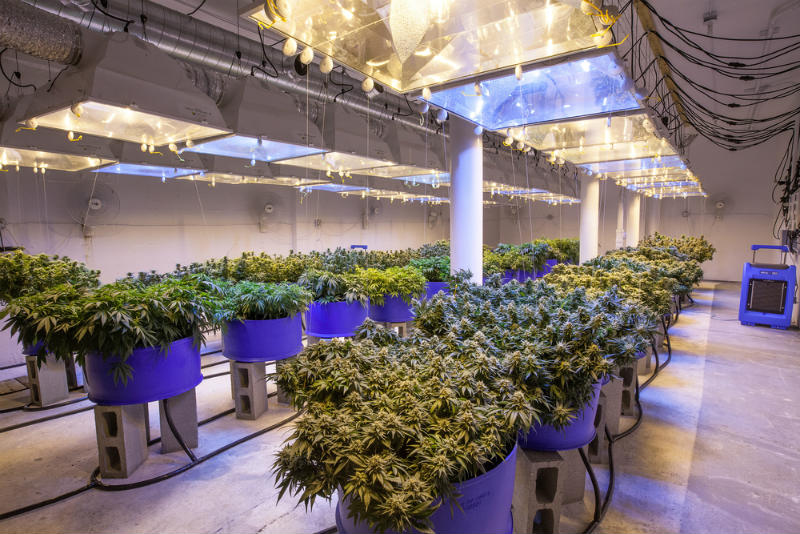Air Extraction in the Grow Room