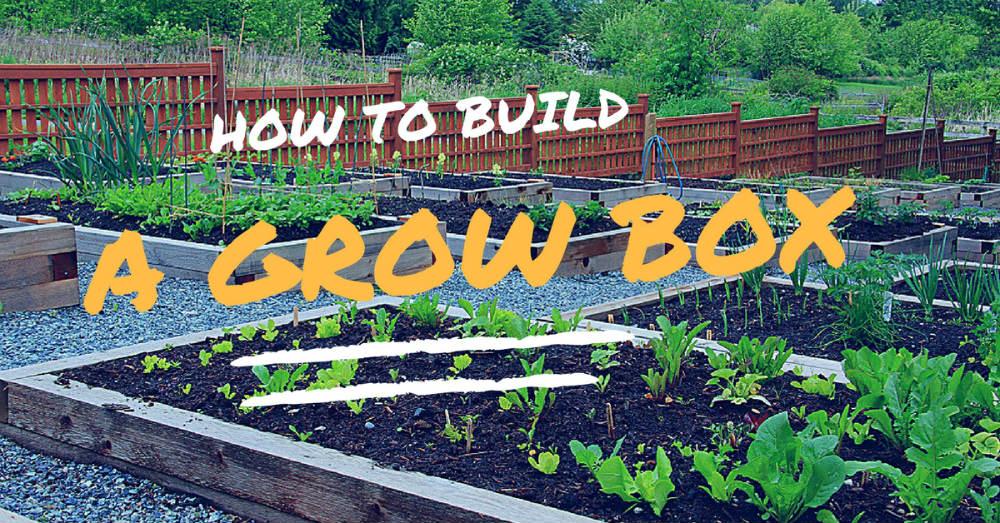 How to build a grow box