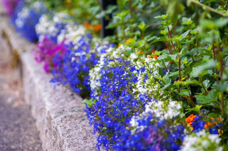 Installing Edges On Your Flower Beds