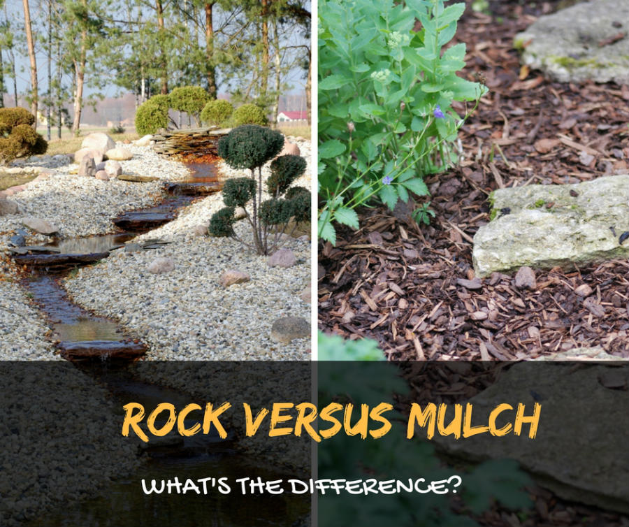 Rock Versus Mulch - Get to Know Their Differences