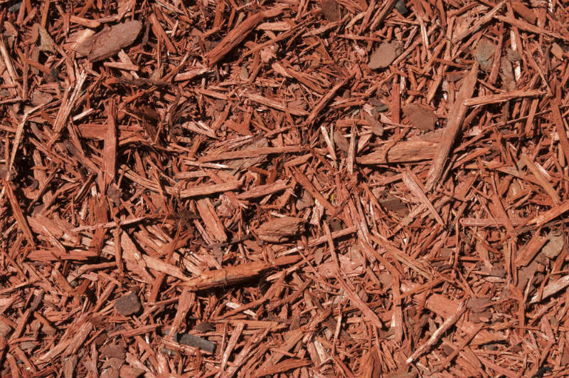 Cedar Wood Chips ~ Rock versus mulch get to know their differences