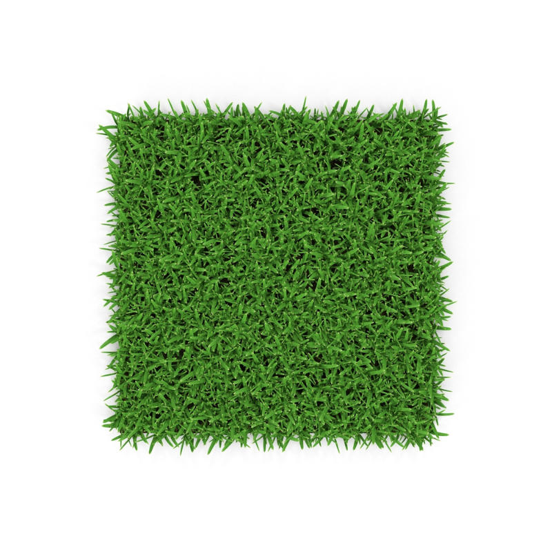 choose grass for warm season