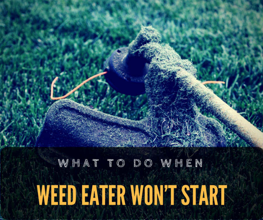 What to do when weed eater won't start