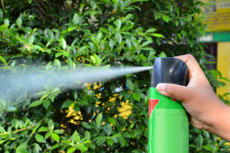 Insecticides - How Does Bug Spray Works