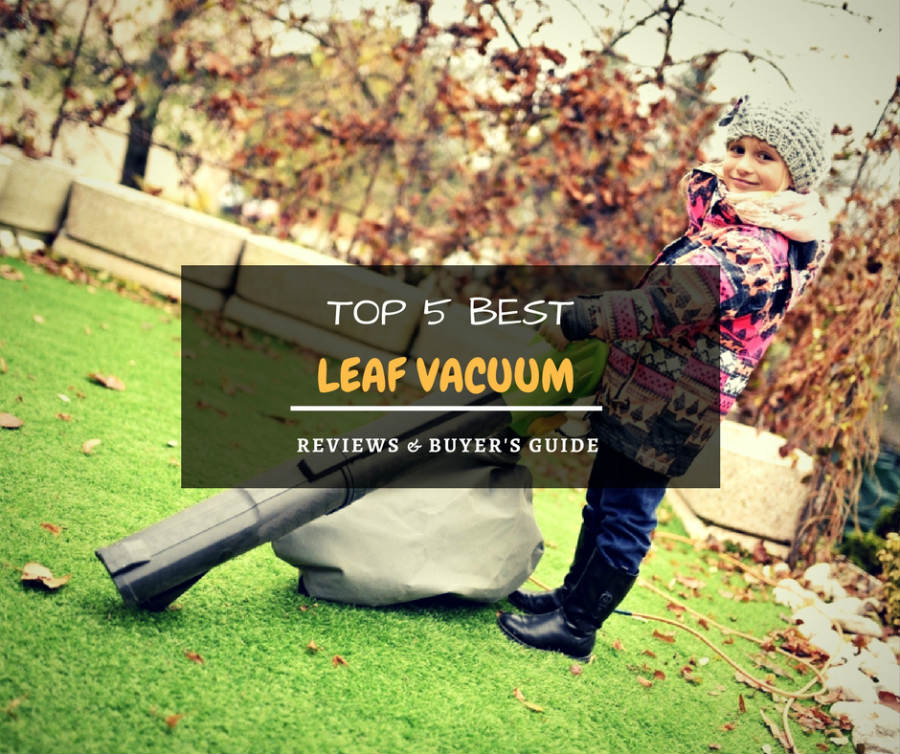 Best leaf vacuum (blower) reviews