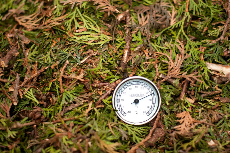 Tracking Your Compost Pile's Temperature