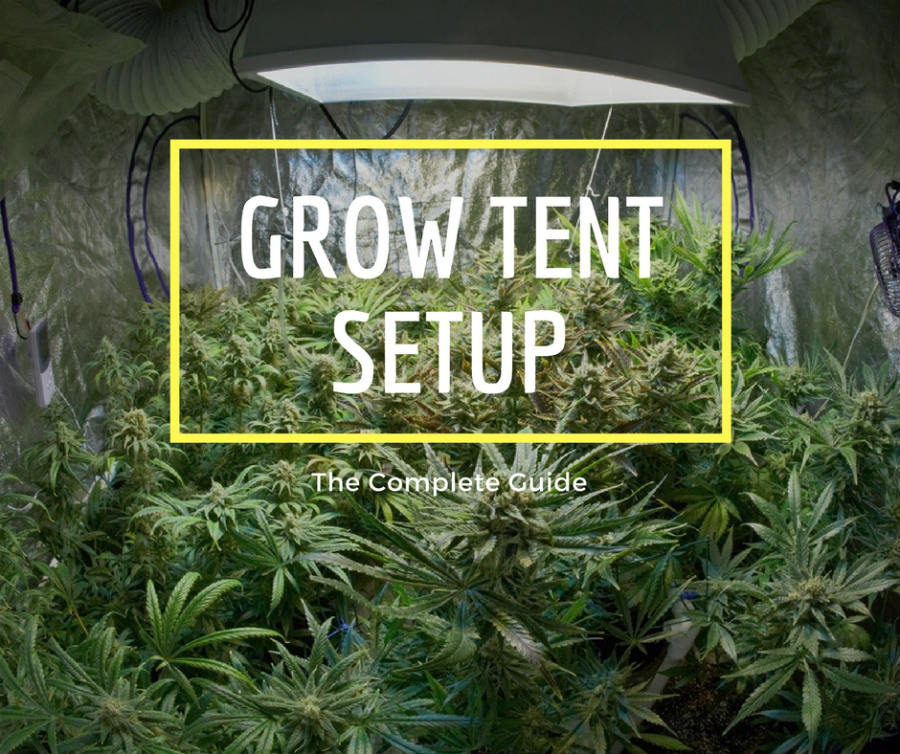 Grow Tent Setup The Complete Guide How To Setup Properly