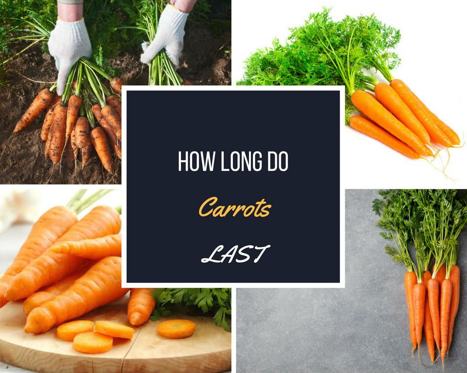 How long do carrots last