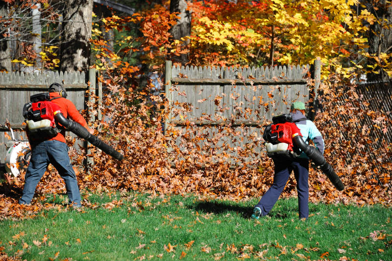 Advantages of Choosing the Right Leaf Vacuum for You