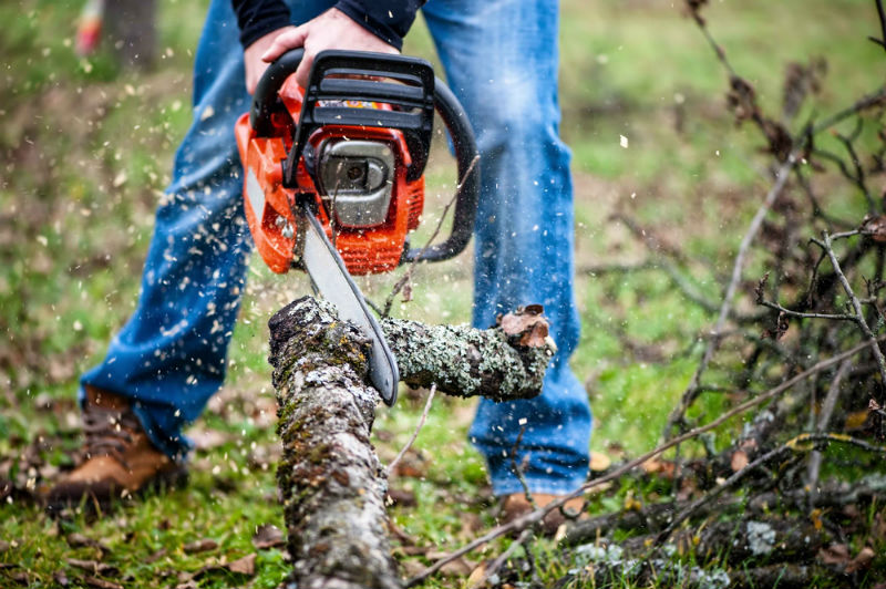 So What's in A Good Professional Chainsaw?