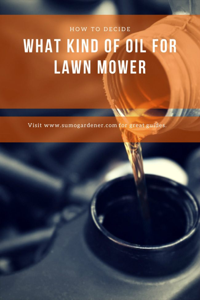 lawn mower oil type