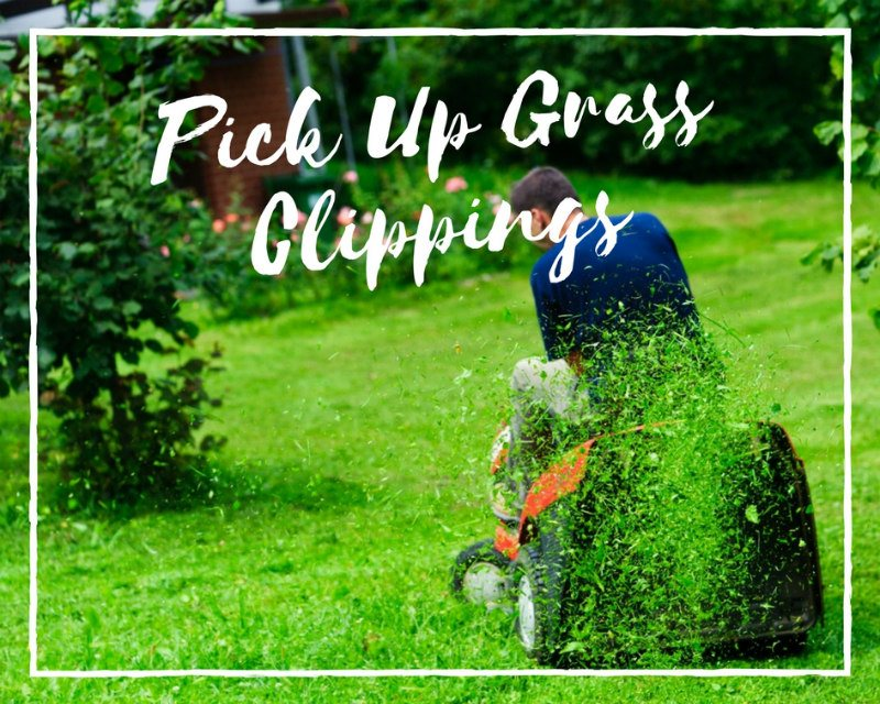 pickup grass clippings