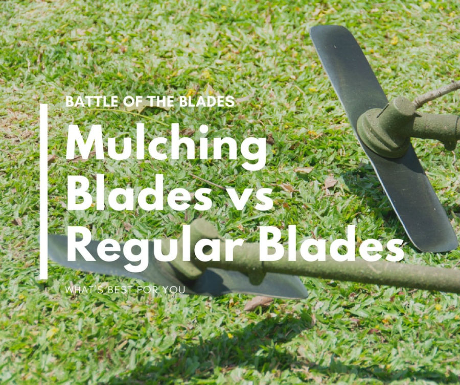 Mulching Blades Vs Regular Blades What S Best For You