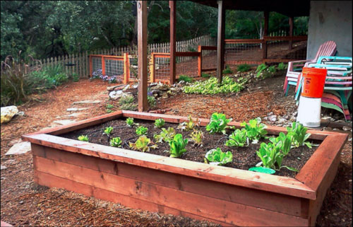 DIY Raised Garden Beds - ResolutionGardens