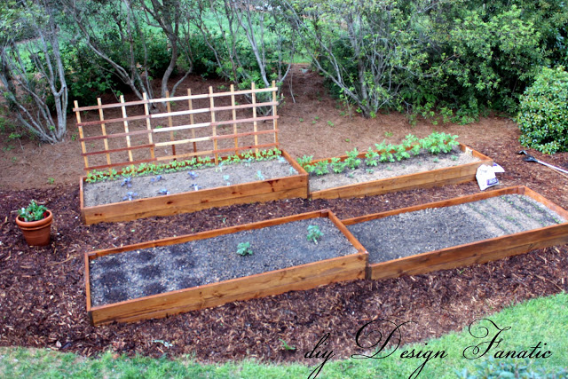 DIY Raised Beds - diy design fantastic