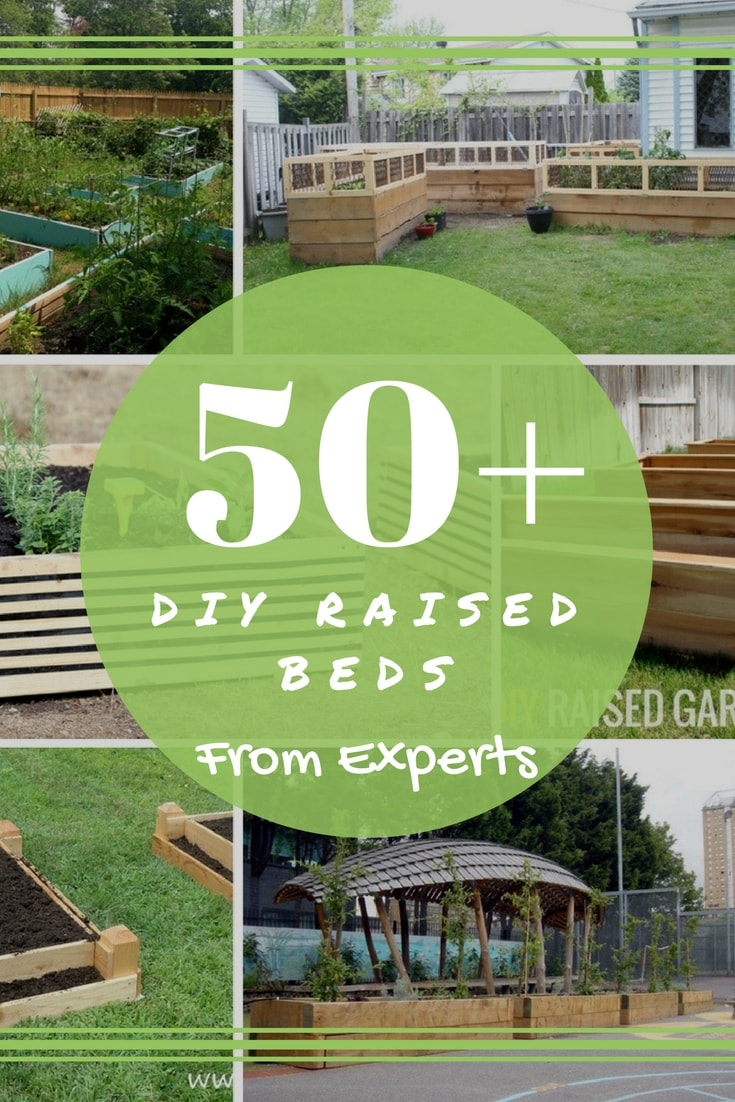 50+ DIY Raised Garden Beds from Experts