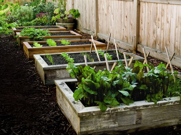 Diy raised garden beds - Popularmechanics
