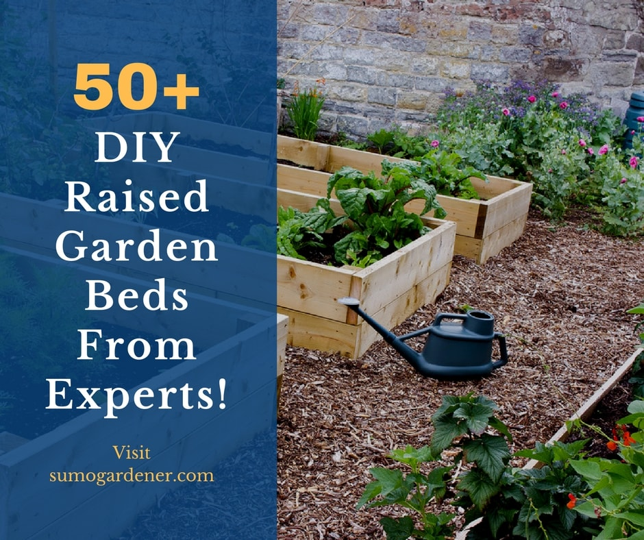 DIY Raised Garden Beds from experts