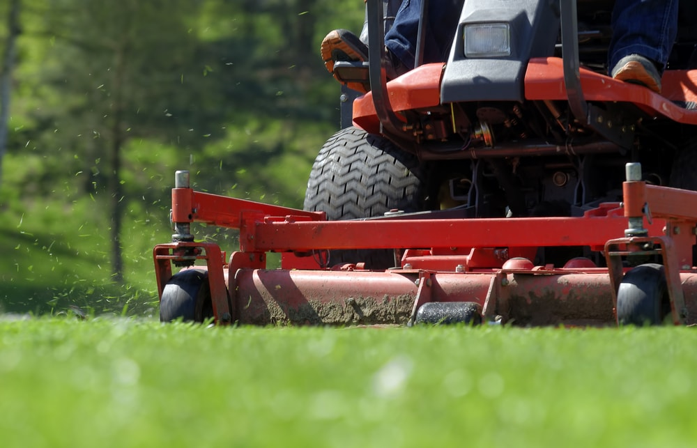 give your lawn a final mow before winter